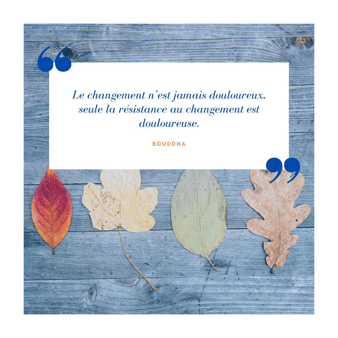 Le changement n'est jamais douloureux, seule la résistance au changement est douloureuse Bouddha - pertinentstrategy.com